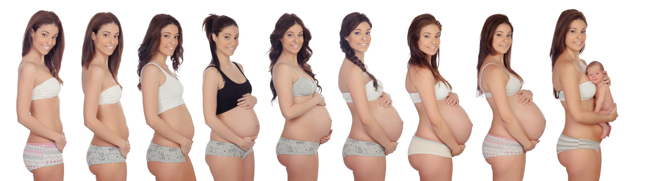 Sequence pictures of a woman during all months of pregnancy